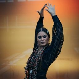 De flamenco in vijf passen